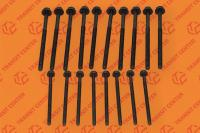 Cylinder head bolts set Ford Transit 2000-2013